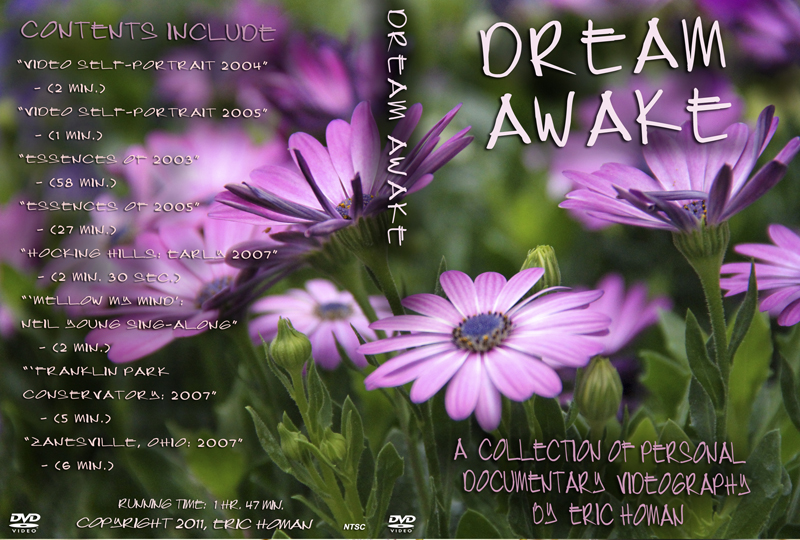 Dream Awake DVD cover