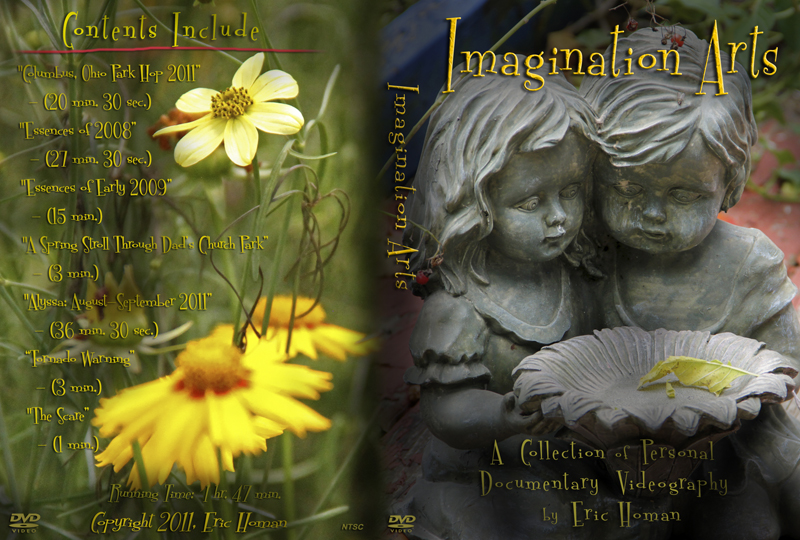 Imagination Arts DVD cover